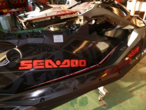 P1000152